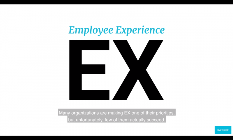 Livework insights on Employee Experience