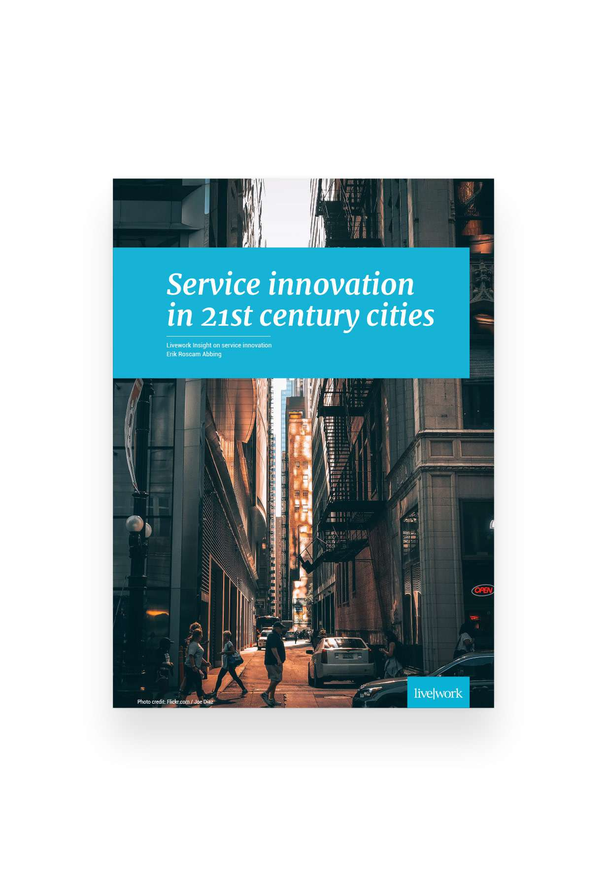 Whitepaper: Service Innovation in 21st century cities