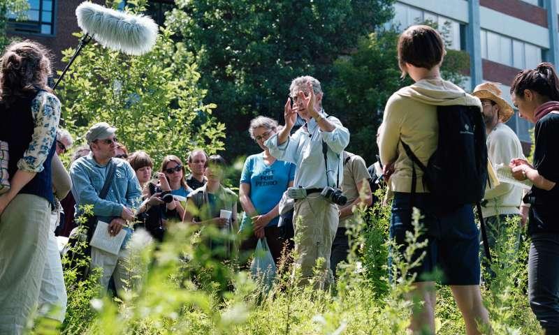 Theme 2: Participative Ecosystems