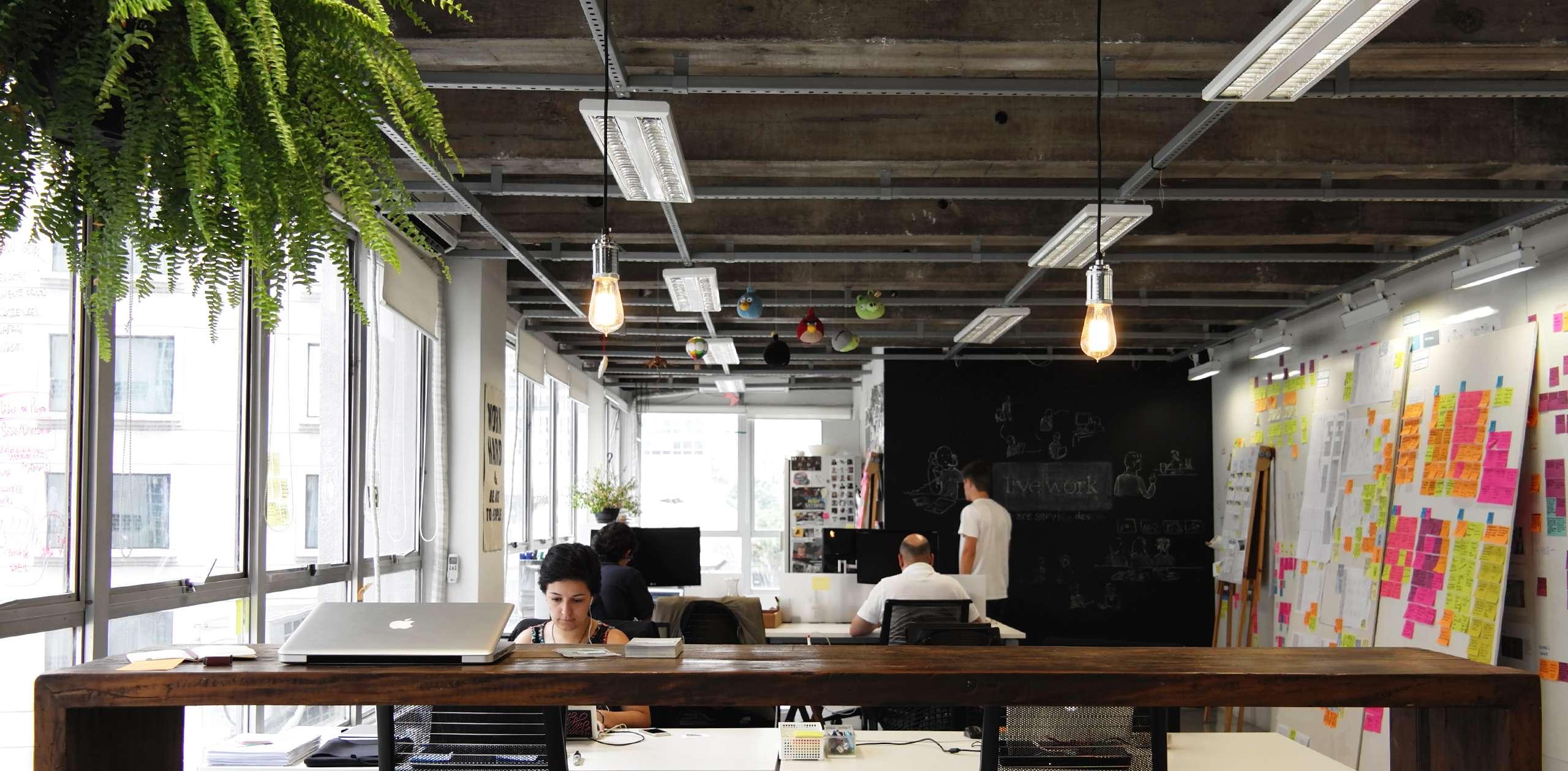 Livework studio<br/> São Paulo